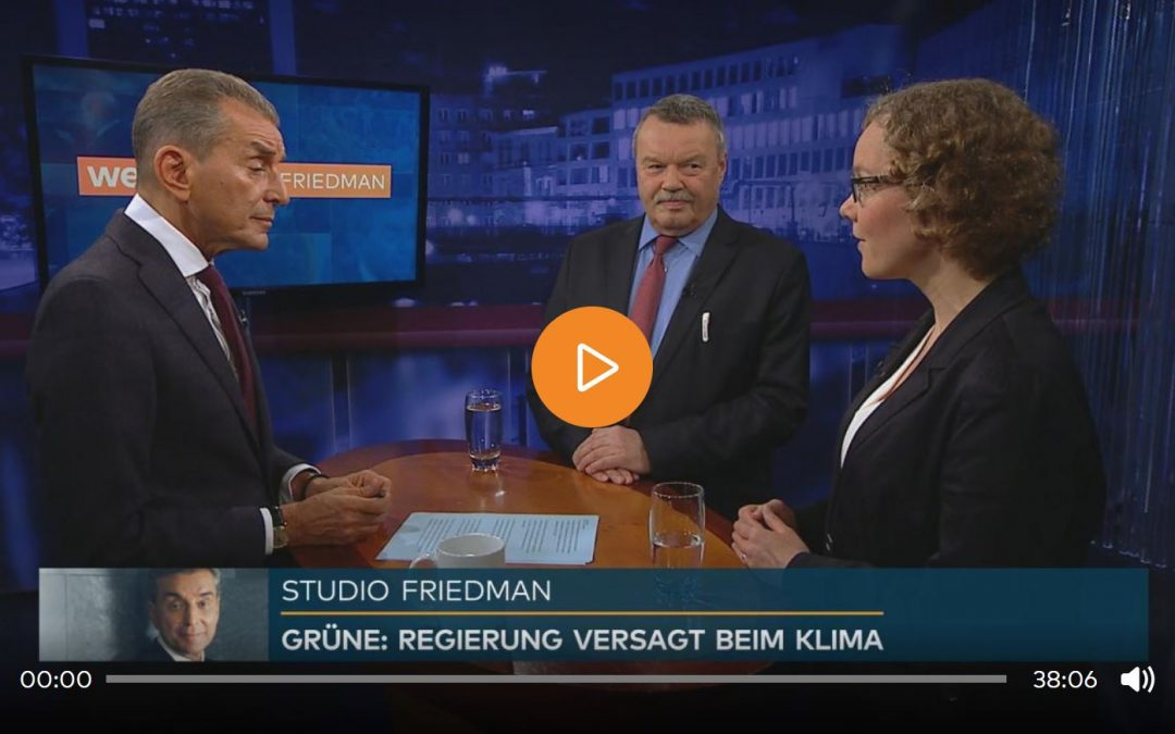 Studio Friedman: Gelingt die Energiewende?