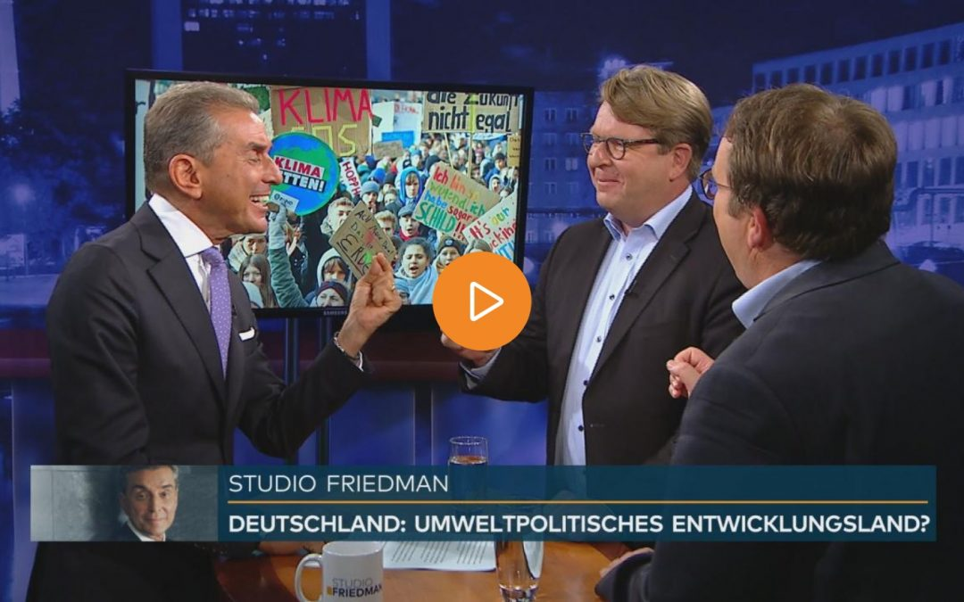 """Studio Friedman: """"Einige Grüne müssen sich den Vergleich mit der AfD gefallen lassen."""""""